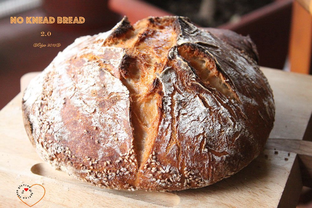 No Knead Bread 2.0