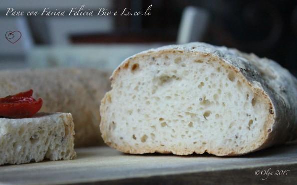Pane con Mix Felicia Bio