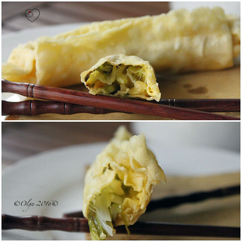 Pasta Wonton - Involtini Primavera