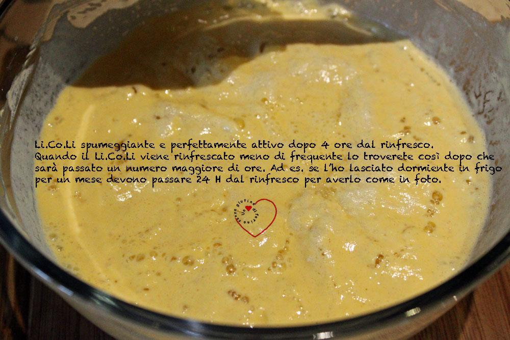 Lievito Madre in Coltura Liquida - LI.CO.LI Senza Glutine