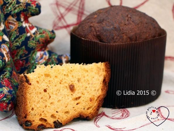 Panettone Senza Glutine a Biga