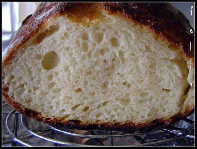 No Knead Bread - Pane Senza Impasto - con Lievito Madre