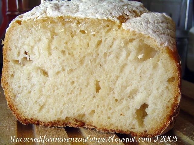 Pane bianco con Lievito madre in Mdp