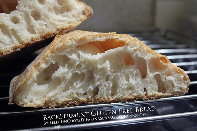 BackFerment Gluten Free Bread