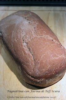 Un piccolo esperimento: Pane Fermentato al Teff - Senza glutine&Senza Lievito