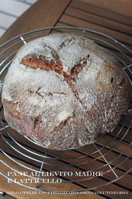 Pane al Latticello con Lievito Madre – Senza Glutine