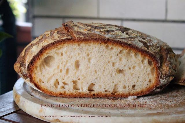 Pane Bianco a Lievitazione Naturale